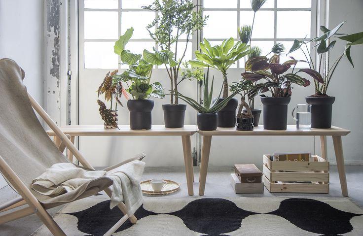 die besten 25 organisch modern ideen auf pinterest. Black Bedroom Furniture Sets. Home Design Ideas