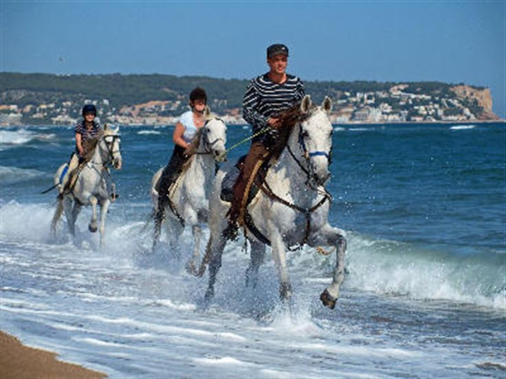 holiday with horses? ;)