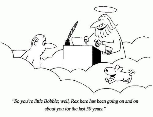 All dogs go to heaven :)
