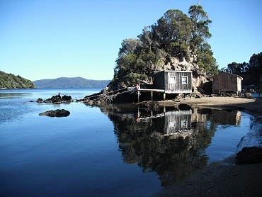 Another fantastic Stewart Island shot!
