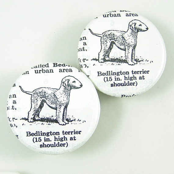 I grew up with #Bedlingtons ! Bedlington Terrier Dog Magnets by XOHandworks $5