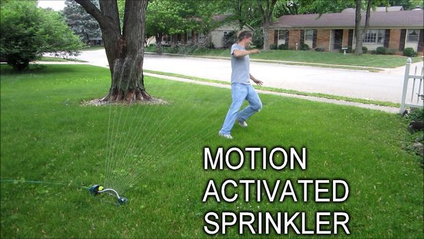 Picture of Keep Unwanted Visitors Away With a Motion Activated Sprinkler- lol, love it!