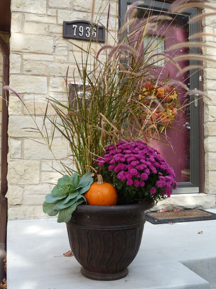 ornamental cabbage, mums,pumpkins and purple fountain grass- simple fall planter