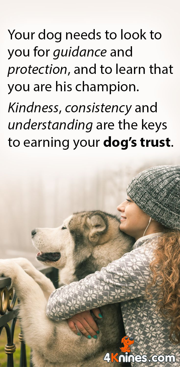 Quotes About Dog Friendship 783 Best Inspirational Dog Quotes Images On Pinterest  Dog Quotes
