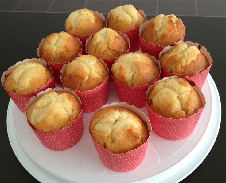 Plain Vanilla butter cake cupcakes