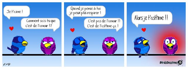 Les birds D063d22774b84db839774a75b4a7a924--les-birds