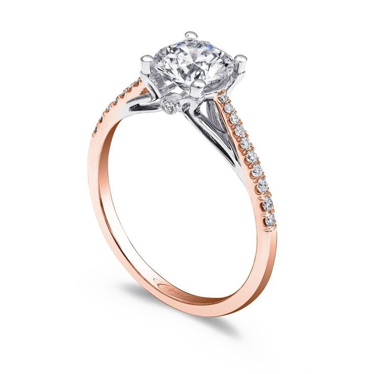 marshalls jewelry 17 best images about engagement rings on white 7478