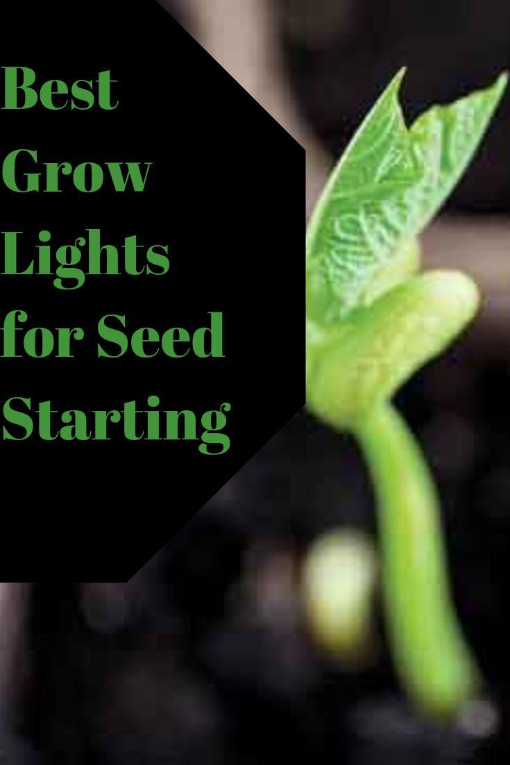 Best Grow Lights For Seed Starting Best Grow Lights 400 x 300