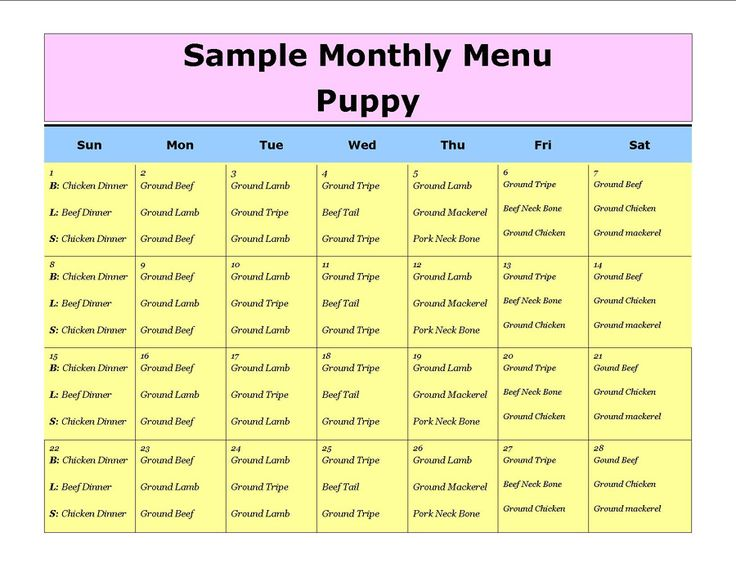 Ordering Dog Food On Line
