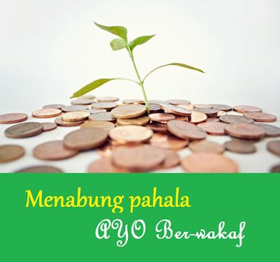 Pelaksanaan wakaf di indonesia serta hikmah wakaf