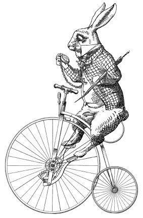 White rabbit on the bike!