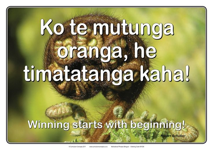 motivational posters for students maori billingual - Google Search