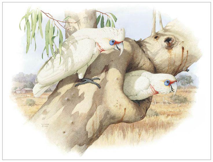 Obra do artista William T. Cooper.