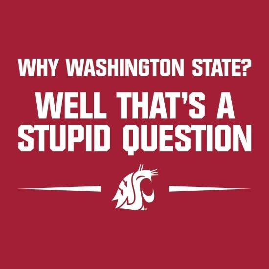 Why Washington State? Well That's a Stupid Question T-shirt $19.99 #WSU #GoCougs #Wazzu