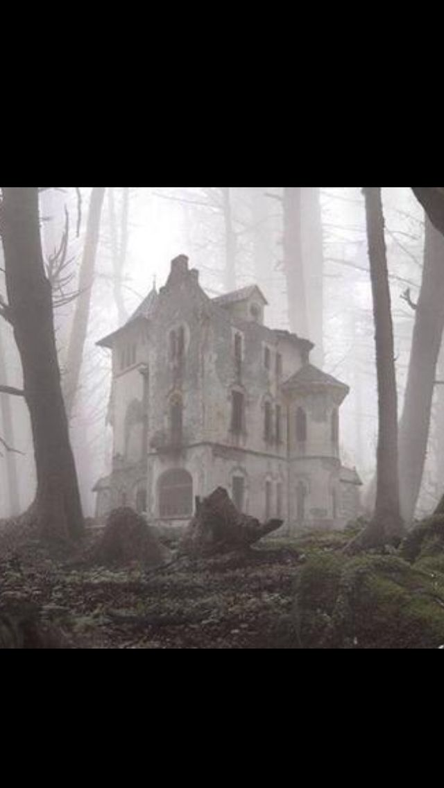 Man if I were to find this Abandoned House in our Woods! I'd be like a kid in a candy store!