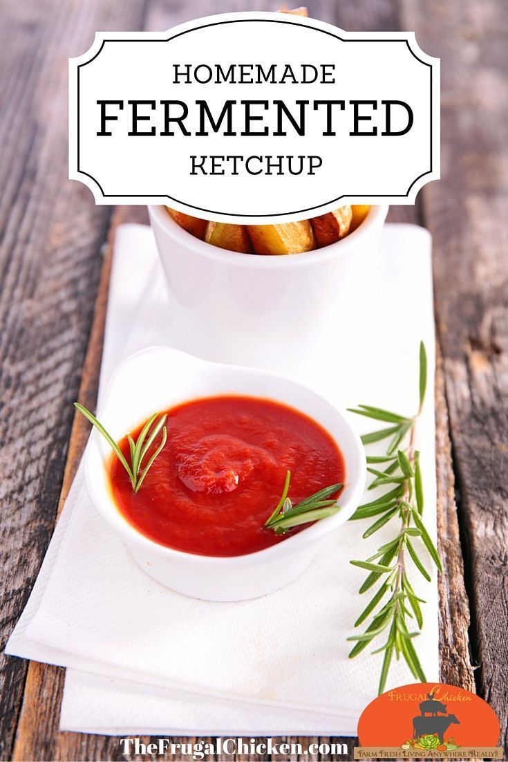 If you love ketchup, then this homemade fermented ketchup recipe is for you. If you have 5 minutes, you have time to make homemade ketchup. It's an easy way to introduce fermented foods to children! From FrugalChicken