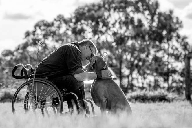 24. Category: Assistance Dogs And Dog Charities, 3rd Place — Special Moment by Ffiona Erskine from Australia