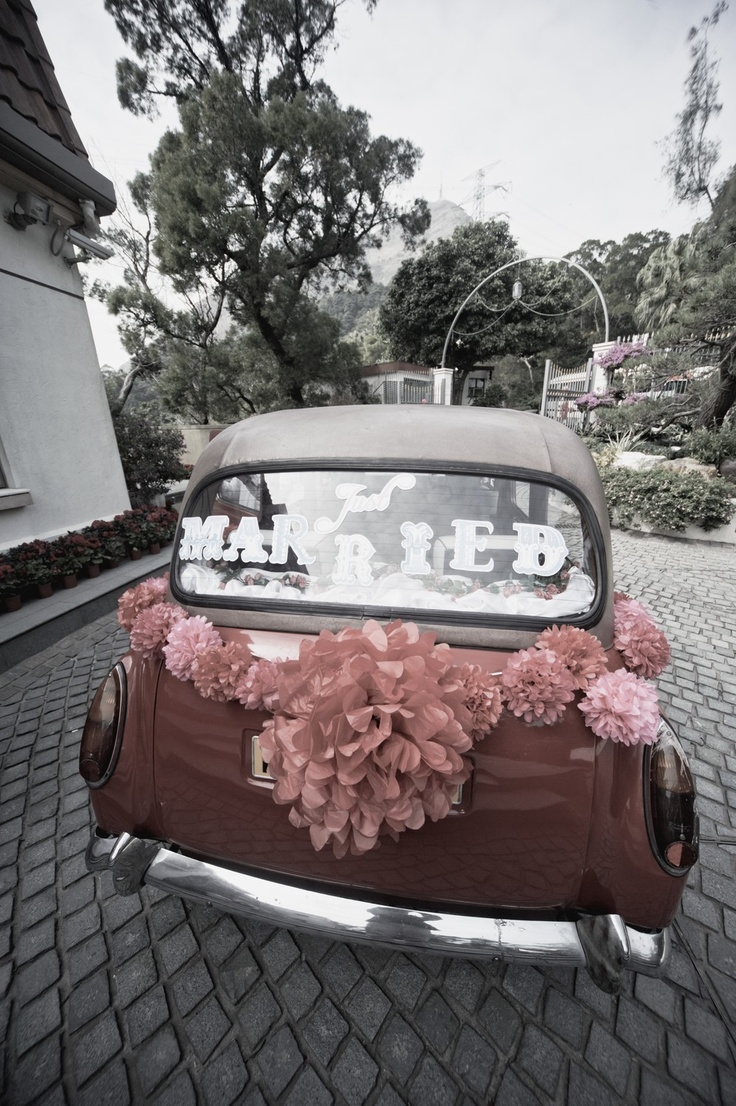 23 best just married cars images on pinterest just married cool and creative wedding getaway car dcor ideas junglespirit Image collections