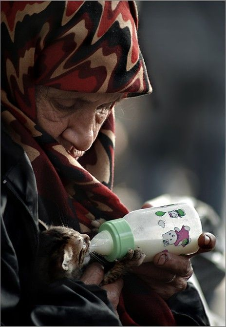 Kitty by *oscarsnapshotter on deviantART (A mendicant woman as a wet nurse in Beyazit Square - October 2006 Istanbul, Turkey)
