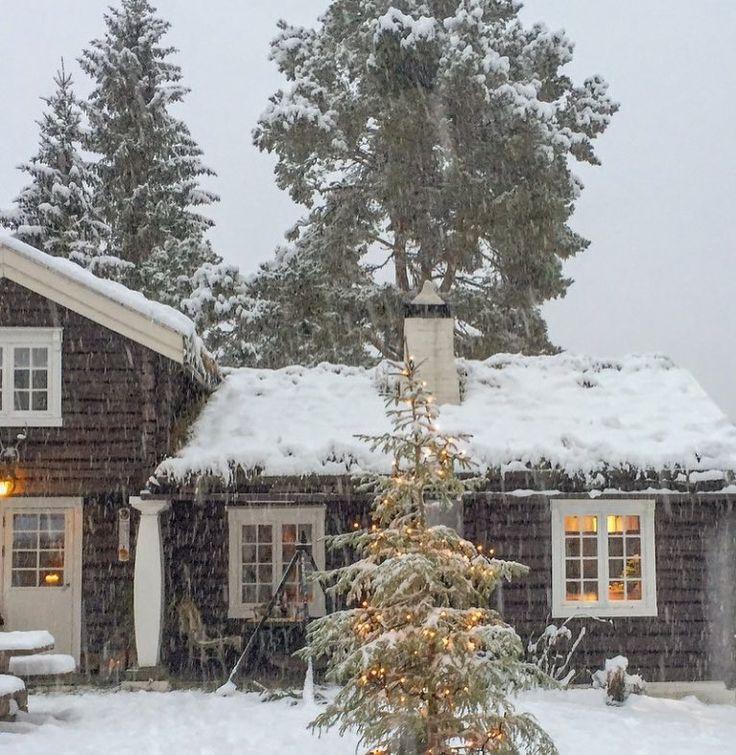 """293 Likes, 16 Comments - Tove Gjerstad (@tovekg) on Instagram: """"Det blir nok ingen hvit jul oppå haugen vår i år. Så da nyter jeg dette minnet fra jula i fjor…"""""""