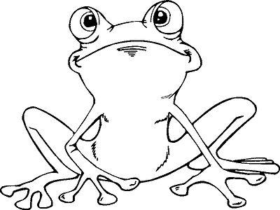 145 Malvorlagen Ausmalbilder Vorlagen Frosch Frösche Unke Kröte Window Color 2