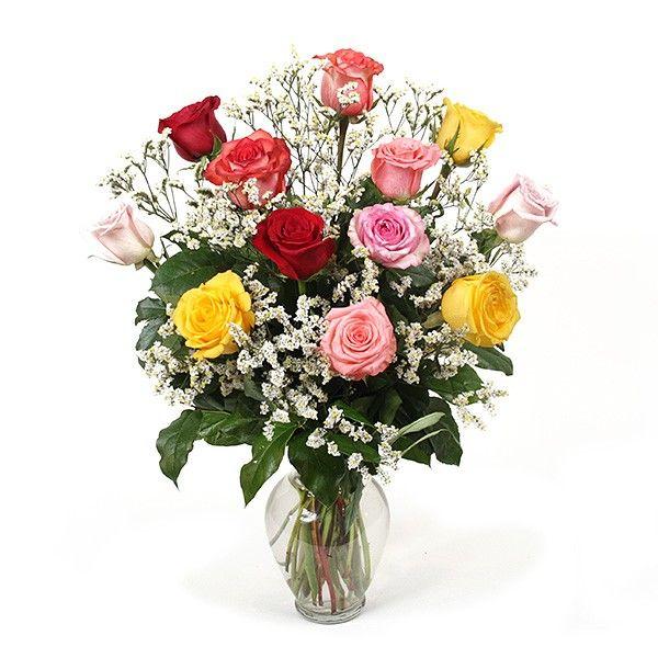 PlantShed.com | A Dozen Multicolored Roses (20'') | Flower Delivery NYC Florist