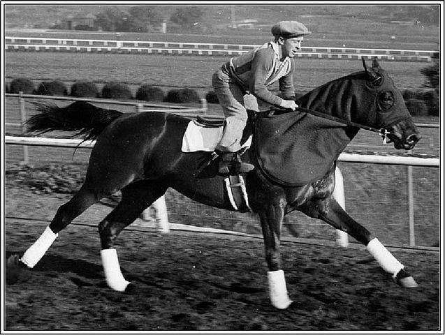 1937 Photo Seabiscuit Red Pollard Santa Anita Horse Racetrack, CA We have been listening to Laura Hillenbrands Seabiscuit in the car and it has been very enjoyable