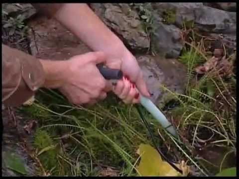 Ako zazimovať záhradné jazierko? | Ako a prečo?