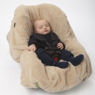Papoose: Five point harness attachment to any car-seat or stroller.