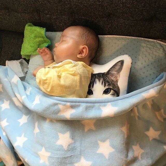 * 黙って見ていると向き癖のある方ばかり向いて寝るので、コッソリ調整を…👀 * 背中に挟んでいるのは、結婚式のときに作った実家の愛猫のクッションです😸 * よしよし、バレてないぞ… * * 2017.2.10 #向き癖#頭の形#赤ちゃんと猫#cat#猫#愛猫#猫クッション#boy#男の子#baby#赤ちゃん#kids#キッズ#子供#family#家族#instakids#instagood#ママ#ママライフ#親バカ#親バカ部#ママリ#コドモノ#コズレ#ベビフル#生後2ヶ月#11月生まれ#riku_1121