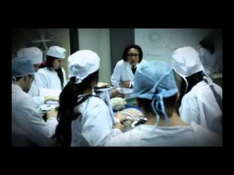 El Campus Alameda se encuentra ubicado en el corazón de Santiago, cuenta con 12.532 mt2 (incluyendo las propiedades de calle José Toribio Medina) construidos.    Alberga a la Facultad de Odontología: http://www.umayor.cl/um/facultad/odontologia-home y las  Escuelas de:     Odontología http://www.umayor.cl/um/odontologia-umayor/   Fonoaudiología http:...