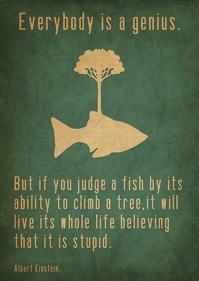 Albert Einstein Quotes, Favorite Quotes, Favourite Quotes