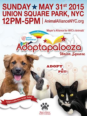 5/31/15 12-5PM atUNION SQUARE Adoptapalooza, the Mayor's Alliance for NYC's Animals' signature pet adoption extravaganza, features hundreds of cats, dogs, and rabbits for adoption from dozens of Alliance Participating Organizations.