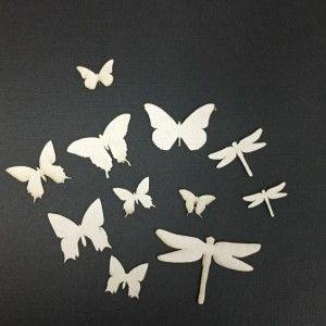 Butterflies and dragon flies