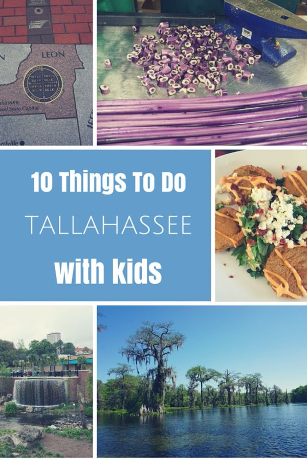 The best attractions for kids in Tallahassee, Florida as well as recommendations for family-friendly dining and accommodation