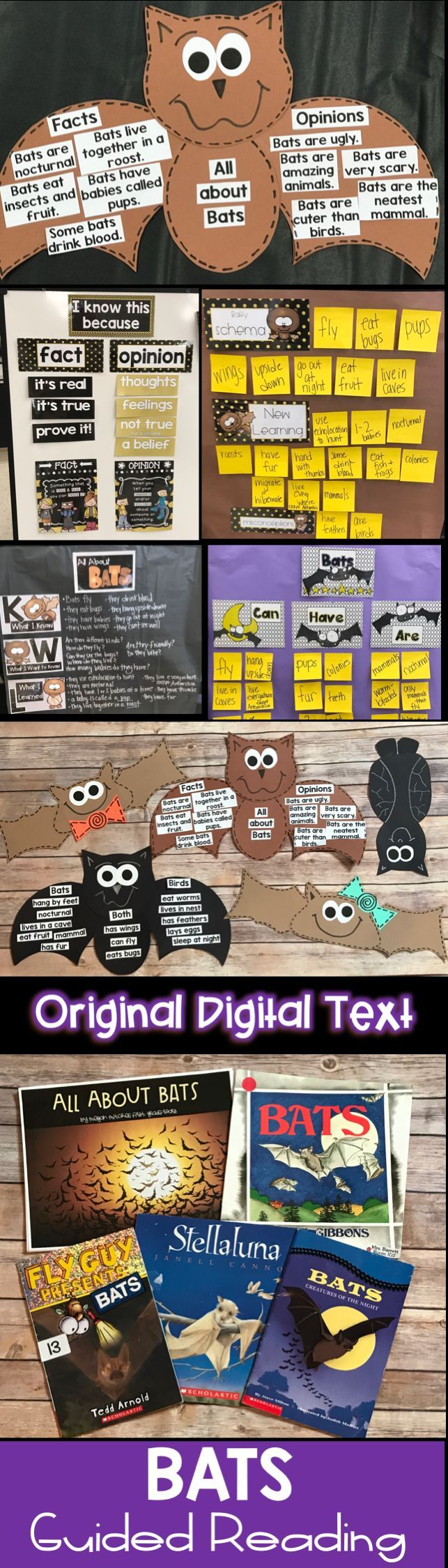 Teach your students about bats using this informative non-fiction text unit. It focuses on fact and opinion, and non-fiction text features. Guided reading extension, writing activities, crafts, projects, a report, anchor charts and so much more. A digital book with real pictures is also included to share on powerpoint or as a pdf file. Your students will be batty experts.