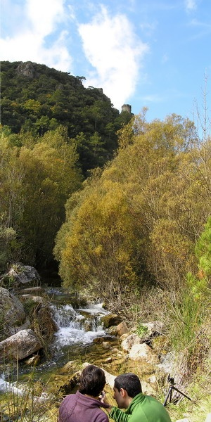 Photography activity to capture biodiversity in the Brugent river Valley, in Muntanyes de Prades, Southern Catalonia