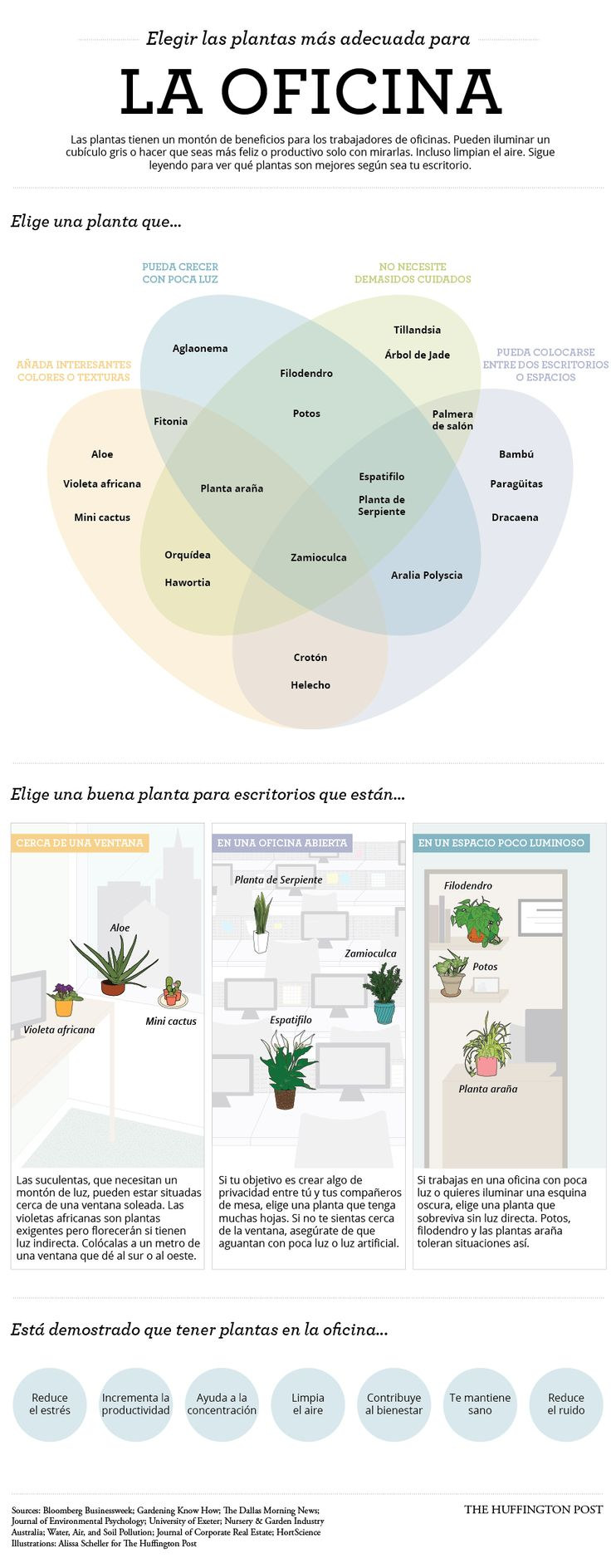 Decorar tu escritorio con plantas mejora tu productividad / ElHuffPost | #readyforergonomics #workspaces