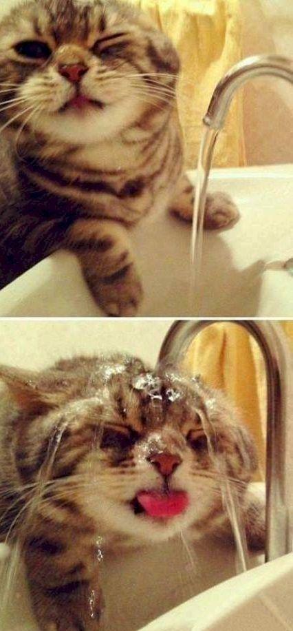 Хтось любить митись