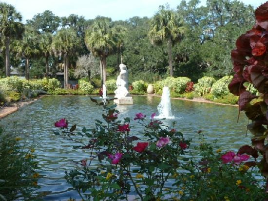 89 Best Images About Murrells Inlet On Pinterest Gardens Fishing Charters And Myrtle Beach Sc