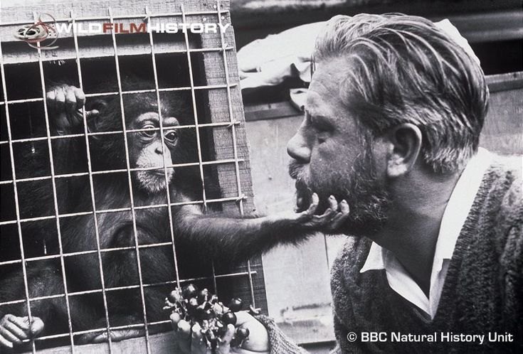 "Gerald Durrell, naturalist, was born in India and grew up in Britain and Corfu. He wrote several best-selling books, the most famous of which is ""My Family and Other Animals."""