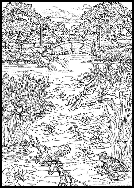 Free Coloring Pages Pond Animals : Pondlife art g coloring pages pinterest