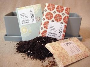 pacchetti di semi di lizzie