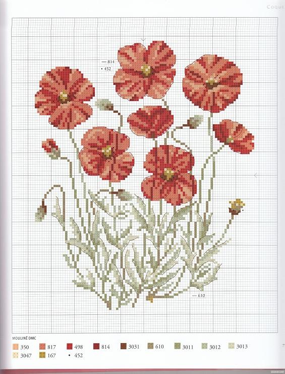 Gallery.ru / Фото #56 - Herbier - Mosca