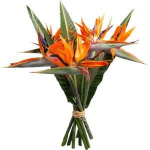 Ανθοδεσμες λουλουδιων