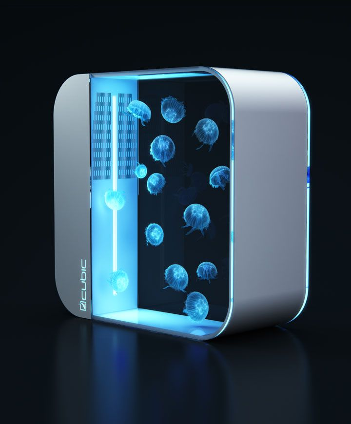 Brand New for 2015, the Pulse 80 offers the perfect environment for jellyfish. Colour changing (remote controlled) LED lights. Available in Black or White, the Cubic Pulse 80 Jellyfish Tank is 80 litres of top of the range aquarium. Dimensions: 670mm x 600mm x 270mm 12 Month Warranty Suitable for up to 100 Jellyfish (see video below!) <strong>Free Delivery to Mainland UK</strong> <strong>Order today for delivery in 1-3 Days!</strong>