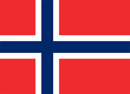 Norges flagga, flaggor