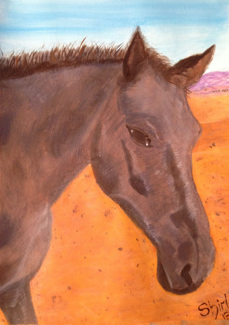 Misverstand Horse by Shirl in Acrylic