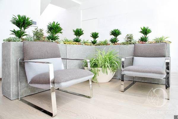 Масштабная композиция из комнатных растений, расположенных в кашпо из инновационного материала, грамотно зонирует пространство. Перегородки не нужны.