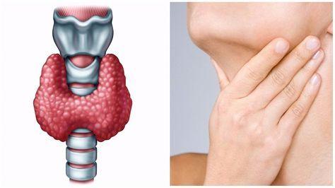 Проблемы со щитовидной железой? Царский орех от всех болезней!